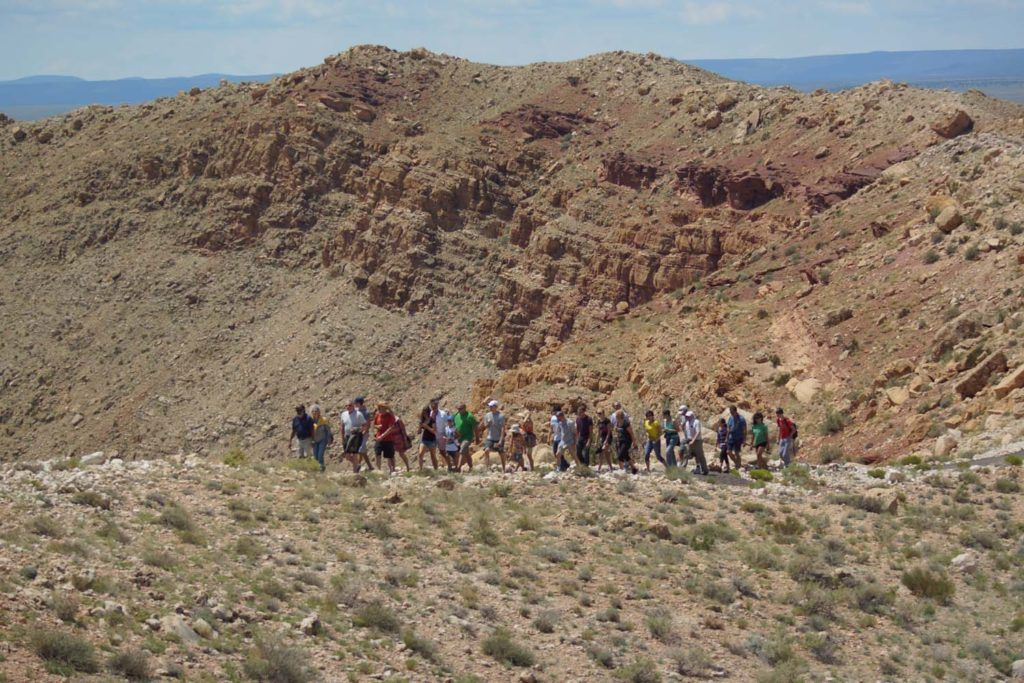 Guided Rim Tours